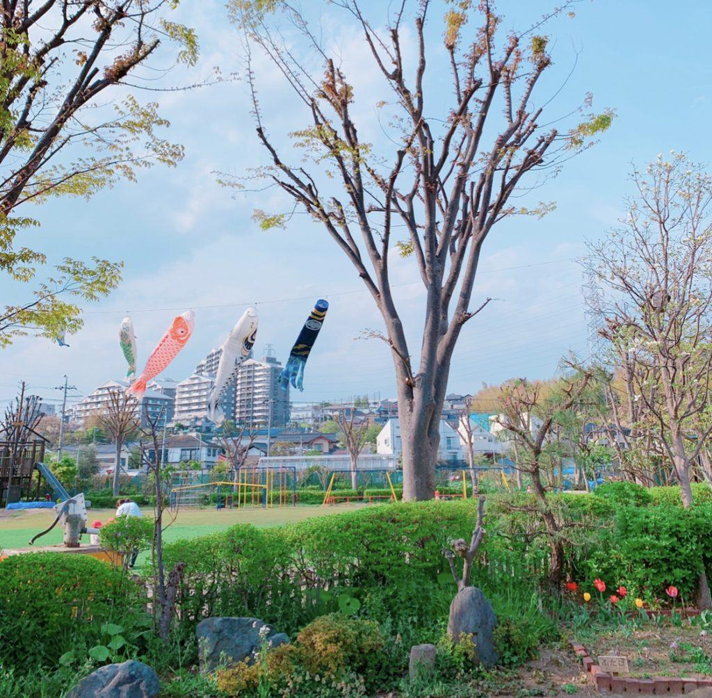 やまた幼稚園のこいのぼり 横浜市都筑区
