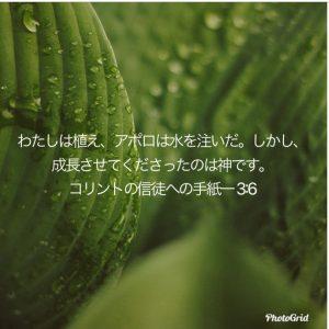 D0B1717D-9C0E-4D5A-B528-39B6F4B9FDDD