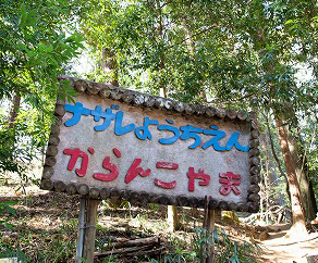 newからんこ山1